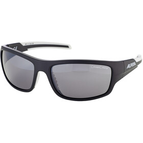 Alpina Testido Gafas, black matt-white